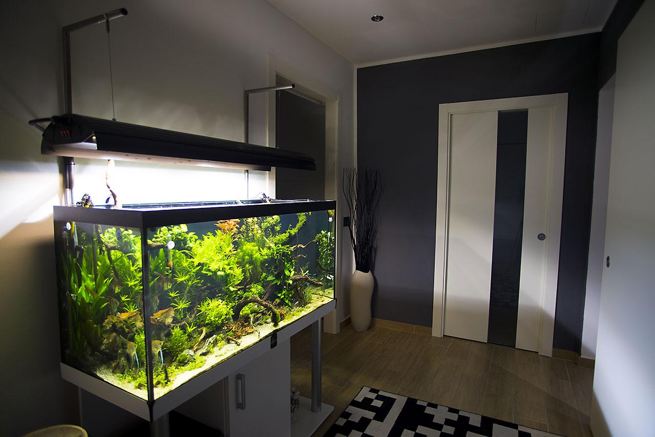 aquarium lab negozio di acquari su misura vendita di